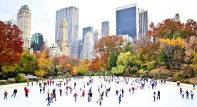 Central Park Skaters
