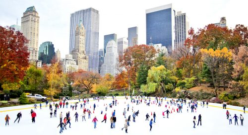 Central Park Skaters Jigsaw Puzzle