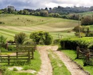 Chiltern Hills Farm