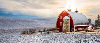 Cold Hills