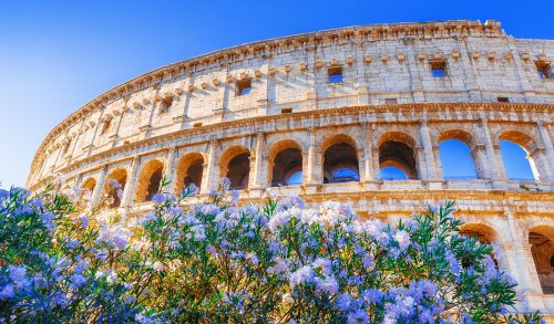 Coliseum and Flowers Jigsaw Puzzle