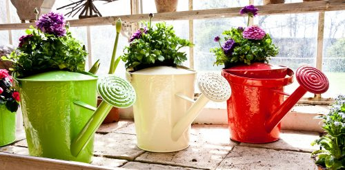Colorful Watering Cans Jigsaw Puzzle