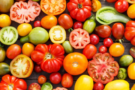 Colors of Tomato Jigsaw Puzzle