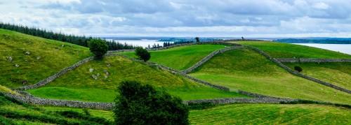 Connemara Fences Jigsaw Puzzle