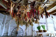 Corn Shed