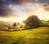 Cotswold Landscape