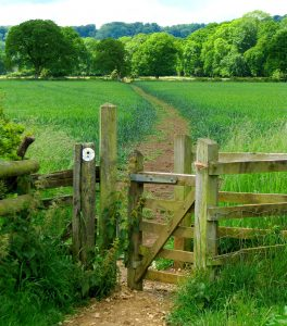 Cotswold Trail Jigsaw Puzzle