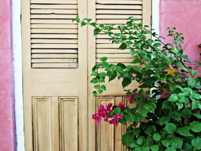 Cottage Door Jigsaw Puzzle