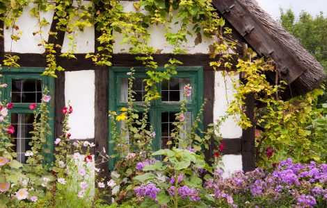Cottage Windows Jigsaw Puzzle