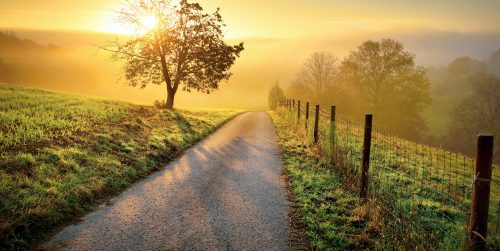 Country Lane Jigsaw Puzzle