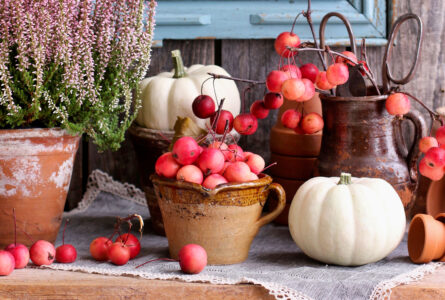 Crabapples Jigsaw Puzzle