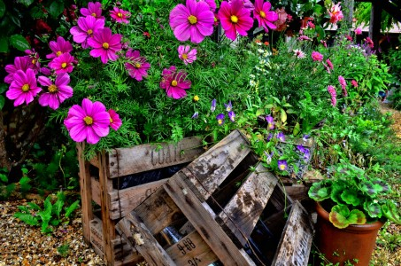 Crate of Cosmos Jigsaw Puzzle
