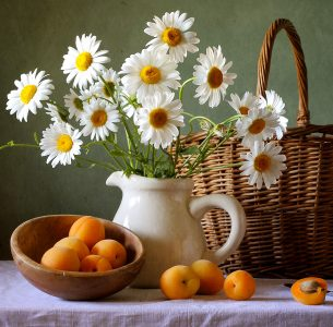 Daisies and Apricots Jigsaw Puzzle