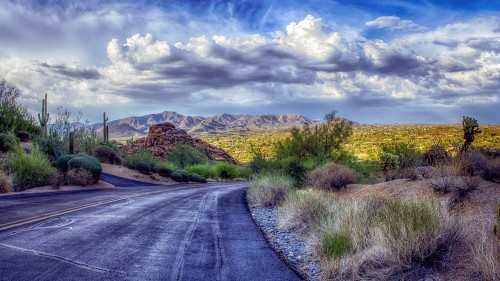Desert Road Jigsaw Puzzle