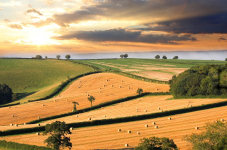 Devon Countryside Jigsaw Puzzle