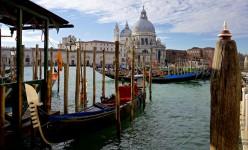 Docked Gondolas