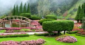 Doi Inthanon Park