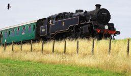 Dorset Train