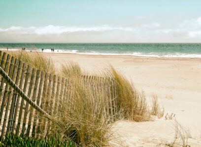 Dreaming of the Beach Jigsaw Puzzle