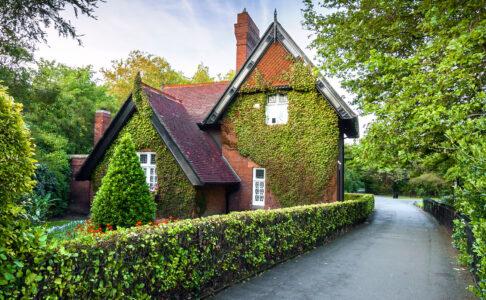 Dublin Cottage Jigsaw Puzzle