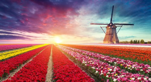 Dutch Sunrise Jigsaw Puzzle