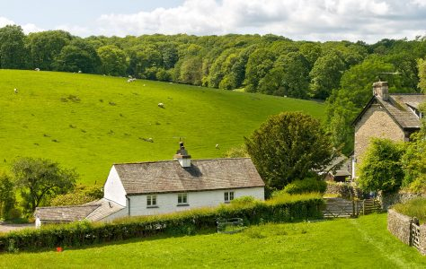 English Sheep Farm Jigsaw Puzzle