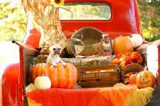 Fall Pickup
