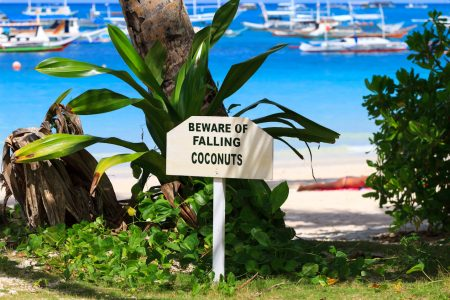 Falling Coconuts Jigsaw Puzzle