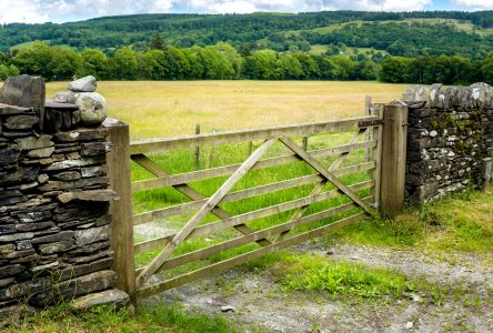 Farm Gate Jigsaw Puzzle