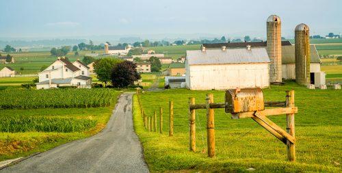 Farm Road Jigsaw Puzzle