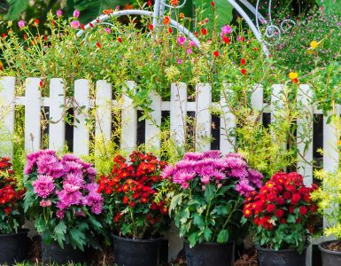 Fence and Flowers Jigsaw Puzzle