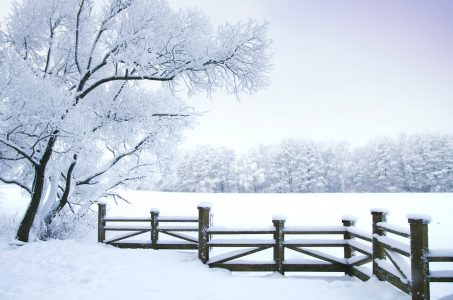 Fenced Snowscape Jigsaw Puzzle