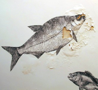 Fish Drawings Jigsaw Puzzle