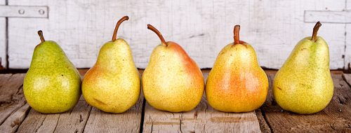 Five Pears Jigsaw Puzzle