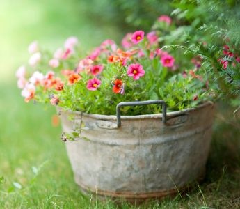 Flower Bucket Jigsaw Puzzle
