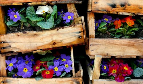 Flower Crates Jigsaw Puzzle