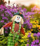 Flower Garden Scarecrow