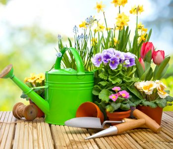 Flower planting jigsaw puzzle for Gardening tools used in planting crossword clue