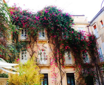Flowering Vines Jigsaw Puzzle