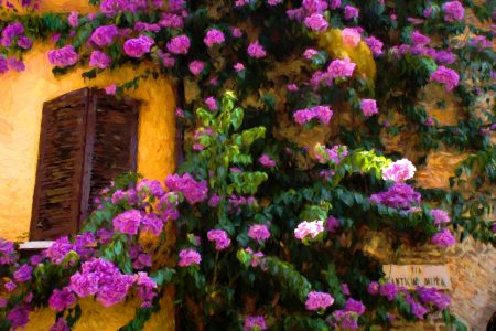 Flowering Wall Jigsaw Puzzle