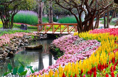 Flowers and Bridge Jigsaw Puzzle
