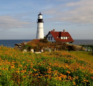Flowers and Lighthouse Jigsaw Puzzle