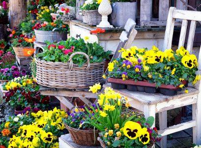 Flowers Ready Jigsaw Puzzle