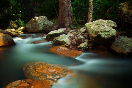Flowing Stream Jigsaw Puzzle