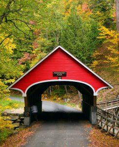 Flume Bridge Jigsaw Puzzle
