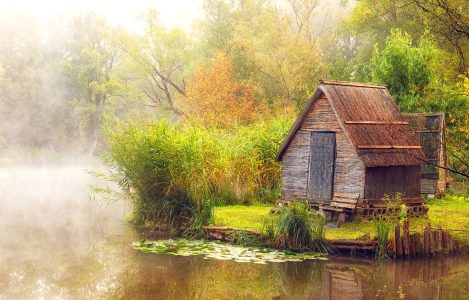 Foggy Pond Jigsaw Puzzle