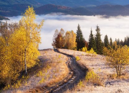Foggy Valley Jigsaw Puzzle