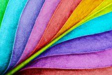 Folded Colors