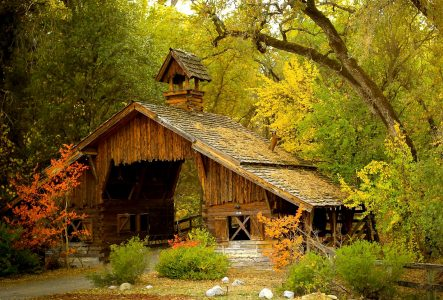 Forest Barn Jigsaw Puzzle