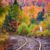 Forest Tracks Jigsaw Puzzle